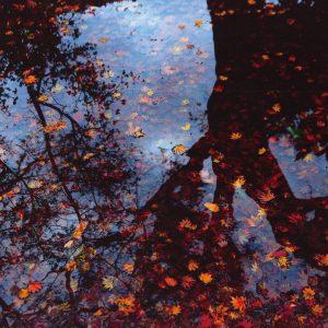 原正樹「落葉」