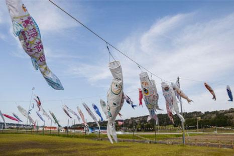 2017岩田鯉のぼり 公園