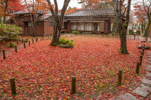 紅葉の落ち葉と邸宅