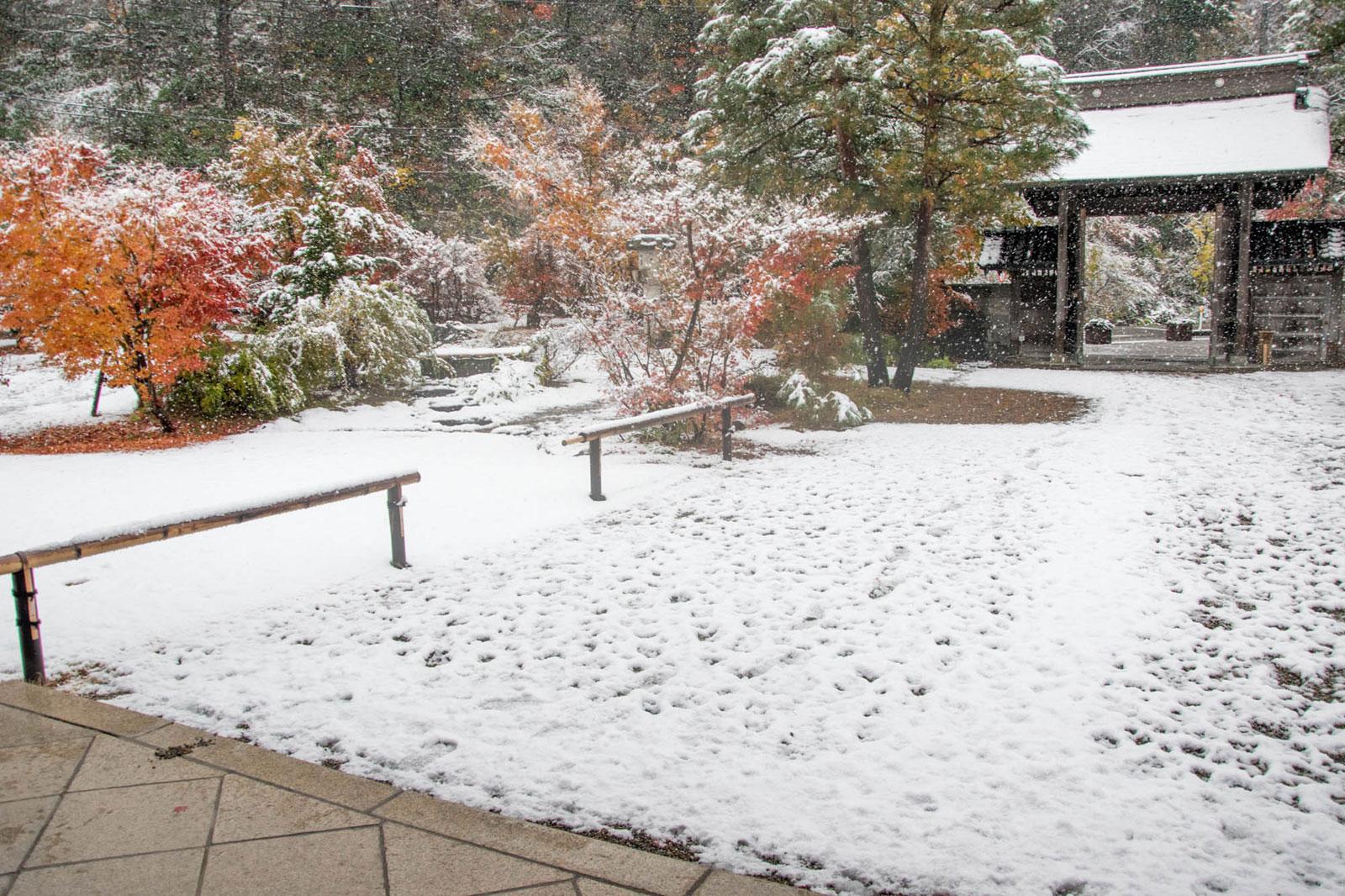 松籟閣 正門と前庭