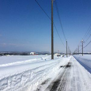 雪の越路原