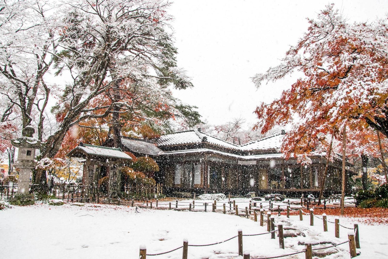 雪の巴ヶ丘山荘