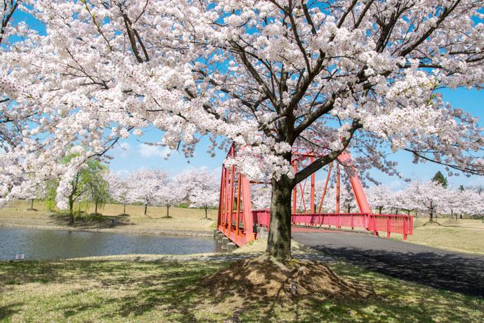 越路河川公園 旧越路橋