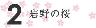 2.岩野の桜