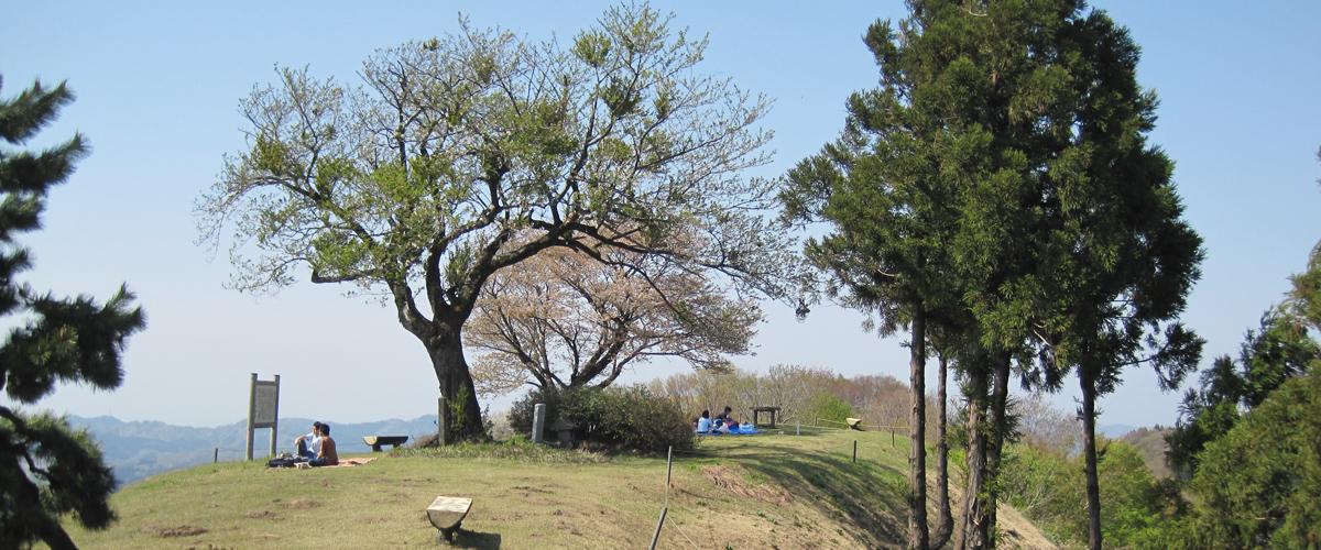 枡形山自然公園