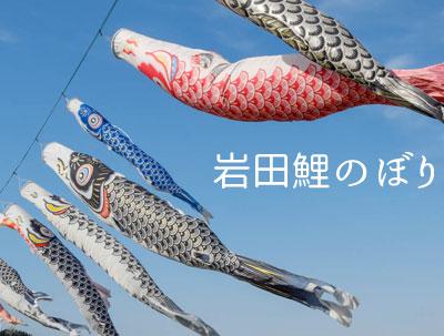2017岩田鯉のぼり